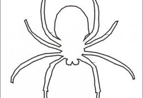 moldes de arañas