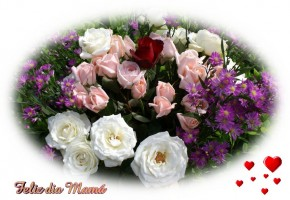 rosas hermosas