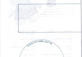 Haga-Facil-Fomy-10-37